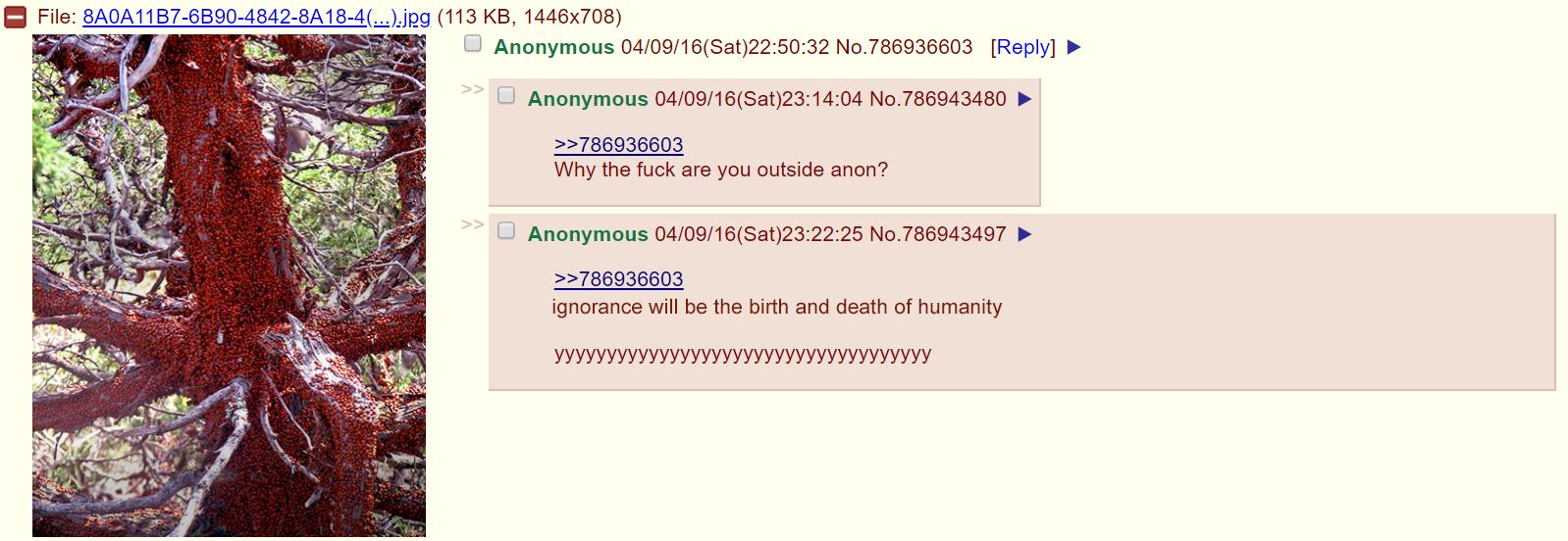 4chan%2012%203